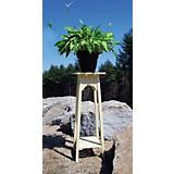 Achla English Plant Stand