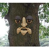 Prankster Forest Face with Glass Eyes
