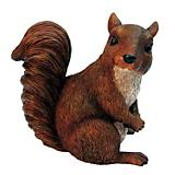 Michael Carr Squirrel