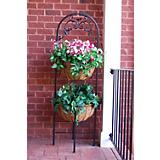 Carolina Honeysuckle Plant Stand