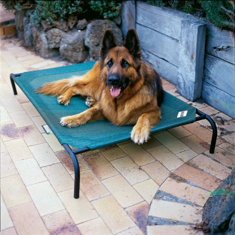 Coolaroo Elevated Pet Bed Large Terra Cotta
