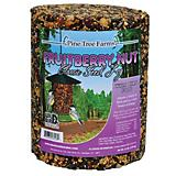 Pine Tree Fruit Berry Nut Classic Seed Log