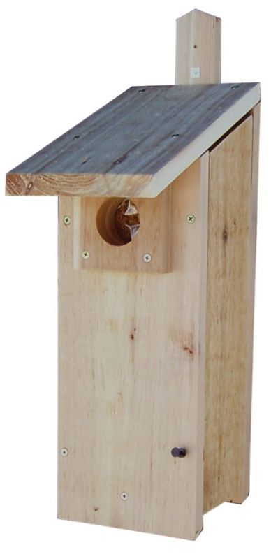 Stovall Wood Woodpecker House (SP4H 894259002461 Wild Bird Supplies Bird Houses) photo