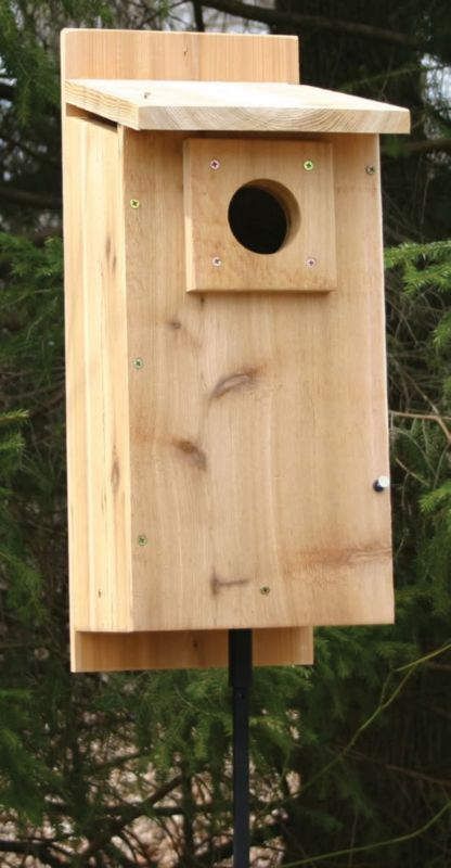 Stovall Flicker House (SP4HF 894259002478 Wild Bird Supplies Bird Houses) photo