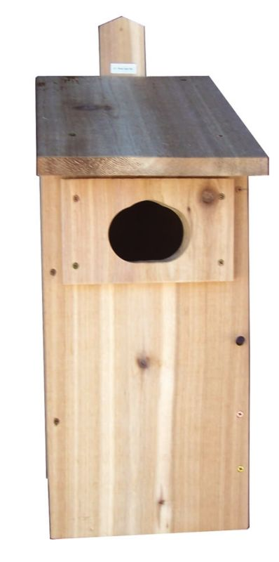 Stovall Wood Duck Box (SP5H 894259002485 Wild Bird Supplies Bird Houses) photo