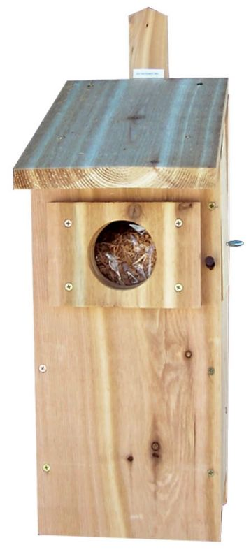 Stovall Wood Screech Owl Box (SP6H 894259002492 Wild Bird Supplies Bird Houses) photo