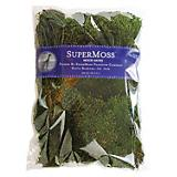 SuperMoss 8Oz Mood Moss Preserved Natural Green
