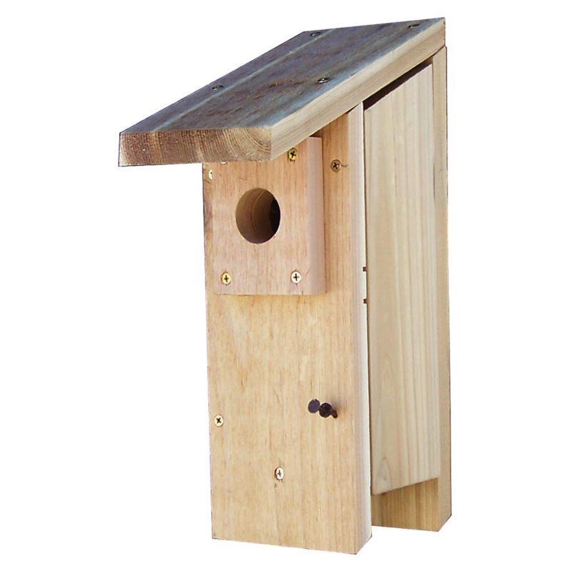 Stovall Bluebird House (SP2H 894259002430 Wild Bird Supplies Bird Houses) photo