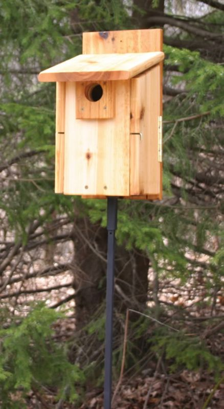 Stovall Western Mountain Bluebird House (SP2HUW 894259002706 Wild Bird Supplies Bird Houses) photo