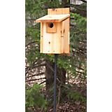 Stovall Western Mountain Bluebird House