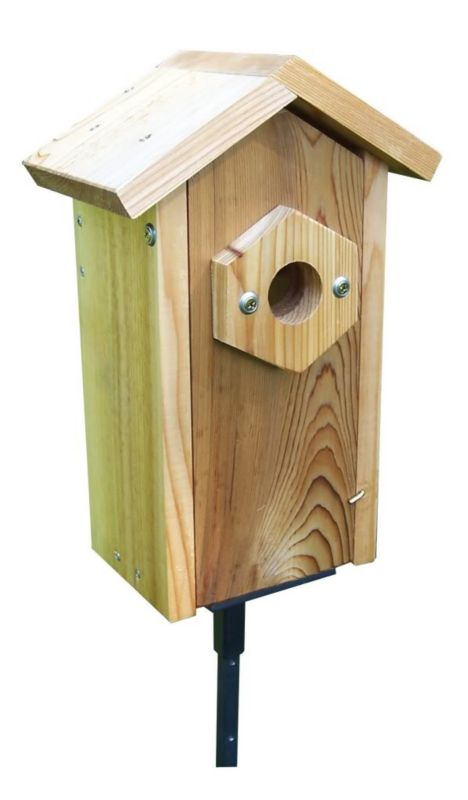 Stovall Window Viewing Nest Box With Suction Cups (SP2HV 894259002720 Wild Bird Supplies Bird Houses) photo