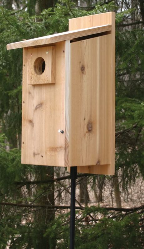 Stovall Basic Rustic Western Mountain Blbird House (SP2HW 894259002690 Wild Bird Supplies Bird Houses) photo