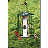 Varicraft Avian Mixed Seed Feeder With Wire Cage