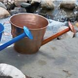 VCS Watering Can Planter