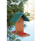 Woodlink Going Gren Oriole And Bluebird Feeder