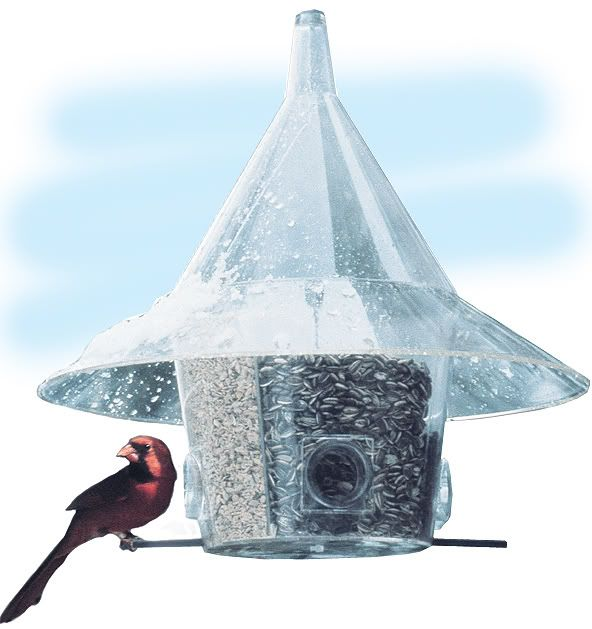 Arundale Mandarin Bird Feeder With Divider