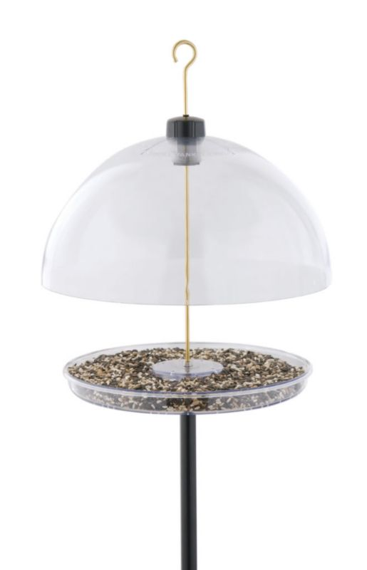 Droll Yankees Dorothys Cardinal Feeder (DRODCF 021964103804 Wild Bird Supplies Bird Feeders) photo