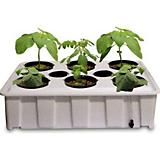 Water Garden Indoor Grow Kit White