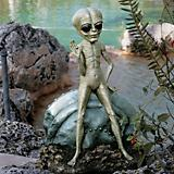 Roswell The Garden Alien
