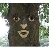 Genuine Tree Peeple Smiley Face