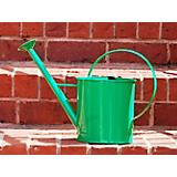 1 Gallon Green Metal Watering Can with Long Spout