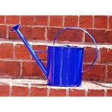 1 Gallon Blue Metal Watering Can with Long Spout
