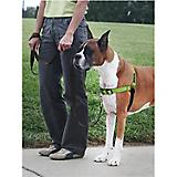 PetSafe Deluxe Easy Walk Dog Harness