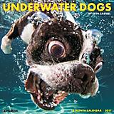 Underwater Dogs 2017 18-Month Calendar