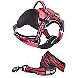 Helios Dog Pet Harness and Leash Combo