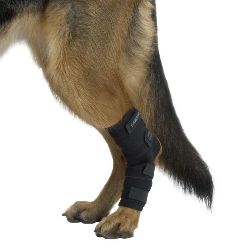 Бандаж для скакательного сустава собаки купить