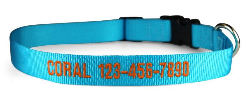 sunny blue nylon collar