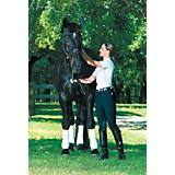 Devon-Aire Ladies All-Pro Ribbed Breeches