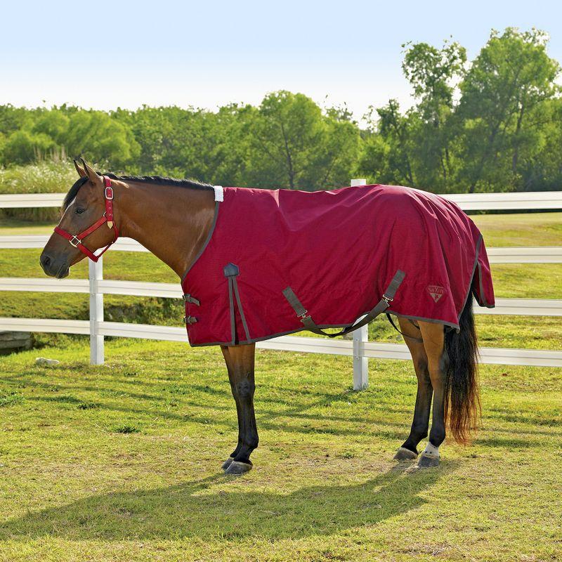Saxon 600D Turnout Sheet 84 Hollyberry Plaid