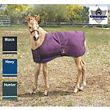 Kensington Foal Turnout Blanket