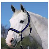 Comfort Padded Halter with Snap