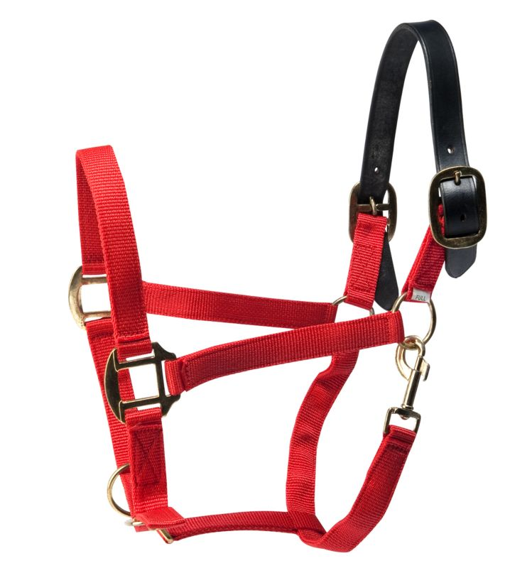 2-Ply Poly Adjustable Breakaway Crown Halter Yearl Best Price
