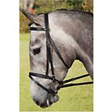 Collegiate Padded Bridle w/Flash Black