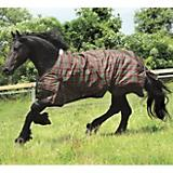 Saxon 600D Turnout Blanket 200g