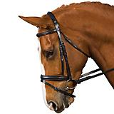 Collegiate Comfort Dressage Bridle