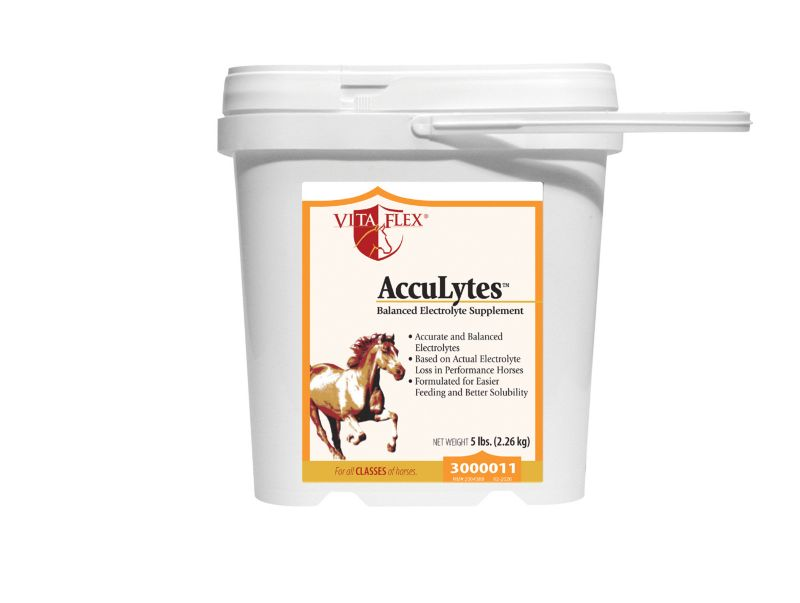 Vita Flex AccuLytes Powder 5lb