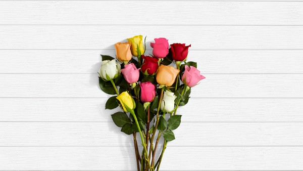 One Dozen Rainbow Roses with Pink Geo Vase