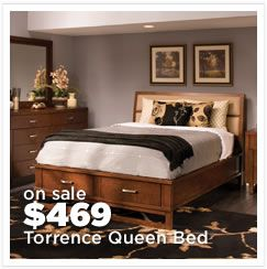 Torrence Queen Storage Bed Sale