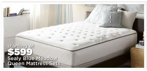 Sealy Blue Meadow Queen Sets On Sale