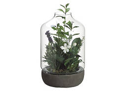 Green and Lavender Terrarium