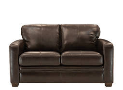 Trent Leather Twin Sleeper Sofa
