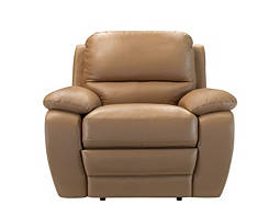 Trinity Leather Recliner