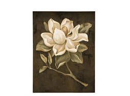 Magnolia I Canvas Wall Art