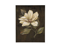 Magnolia II Canvas Wall Art