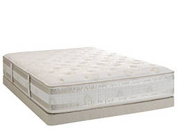iSeries™ Admiration Plush Low-Profile Queen Mattress Set