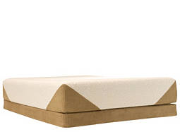 iComfort® Savant™ Plush Memory Foam Queen Mattress Set